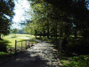 Wills Park
